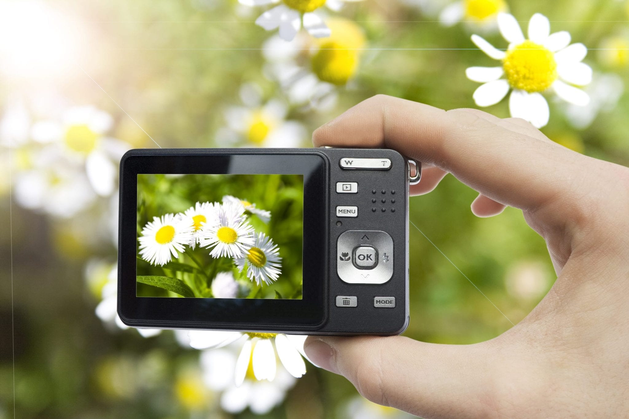 Digital Photography Advanced